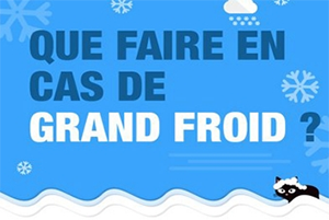 Image grand froid petite
