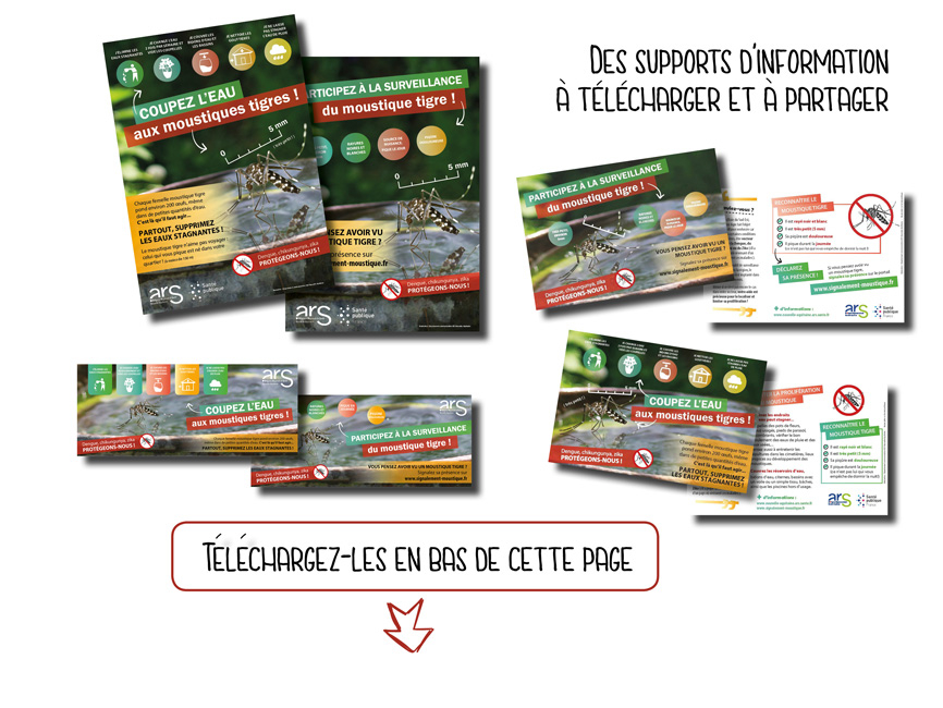 Moustique tigre 2018 - supports de communication